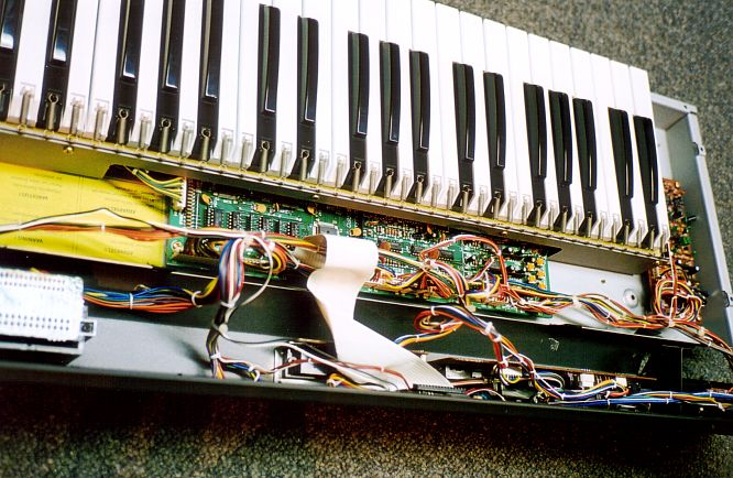 Roland Alpha Juno 2 JU-2 by deep!sonic 03.2004, tnx to www.djrömer.ch