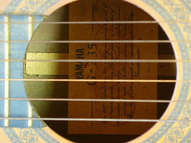Yamaha G-235 @ deepsonic 08.05.2009