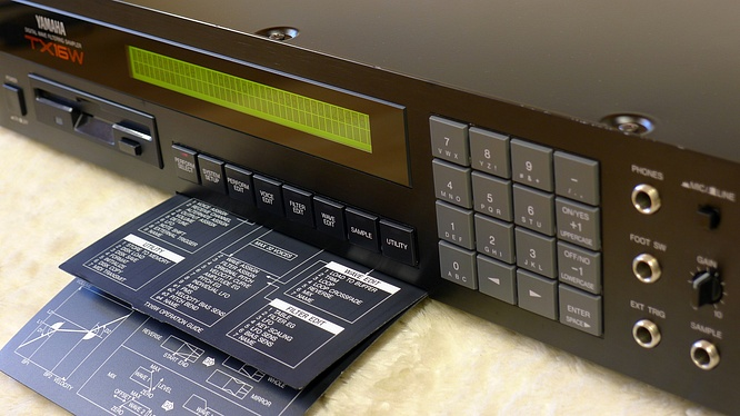 Yamaha TX16W with Typhoon 2000 by deep!sonic 21.08.2013
