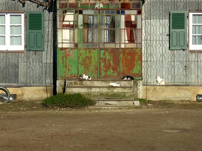 Haus in Weihergebiet n�rdlich zu Faverois (F)