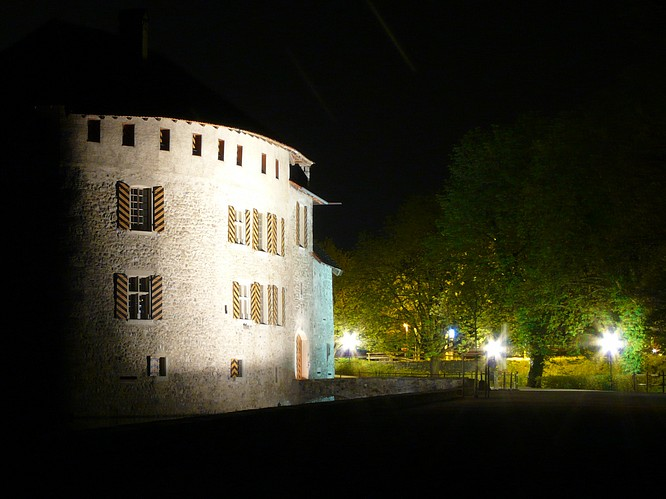 Nachtstimmung beim Schloss Hallwyl in Seengen
