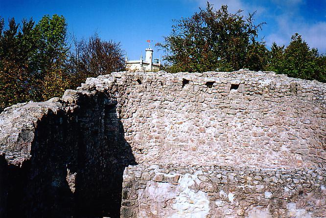 Ruine Wartburg in Olten