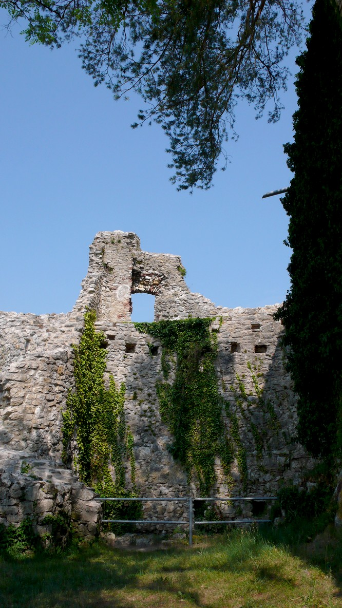 Burg Ruine Dorneck in Dornach