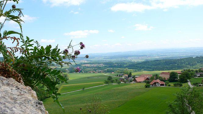 Grottenburg Balm, Sicht auf Balm