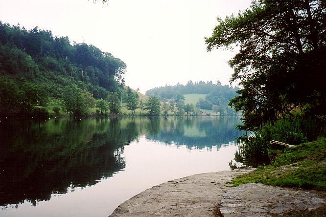 Ufergegend Rotsee
