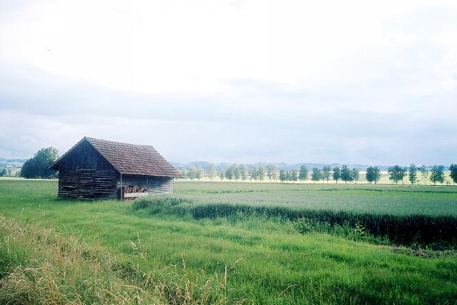 Ebene von Wauwil