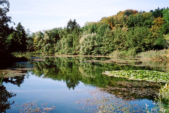 See in Bleienbach
