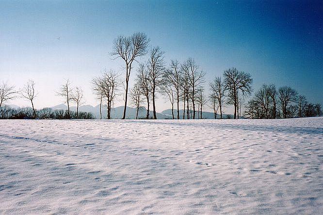 Engelberg bei Dulliken
