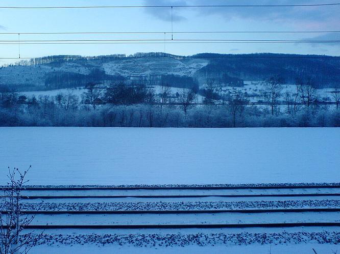 Feld in Wangen, Born