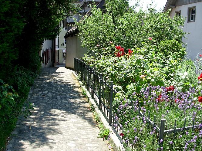 Vorgarten in Olten