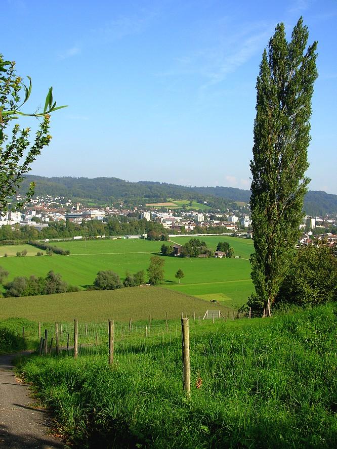 Auf dem Wissberg Strengelbach, Sicht auf Zofingen