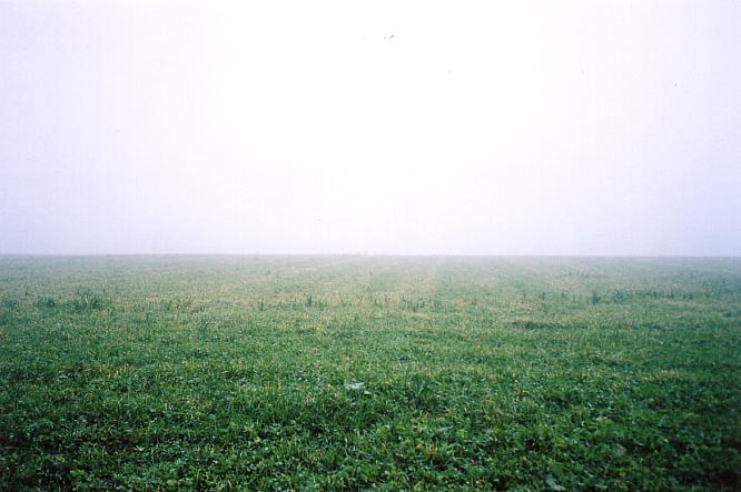 Nebel in Kappel(SO), Blick richtung S�den