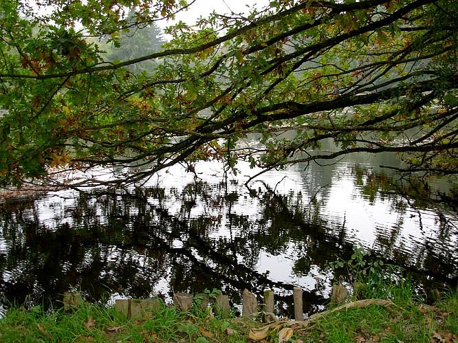Seeregion zu Bleienbach