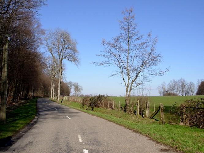 Strasse gegen Norden, Faverois (F)