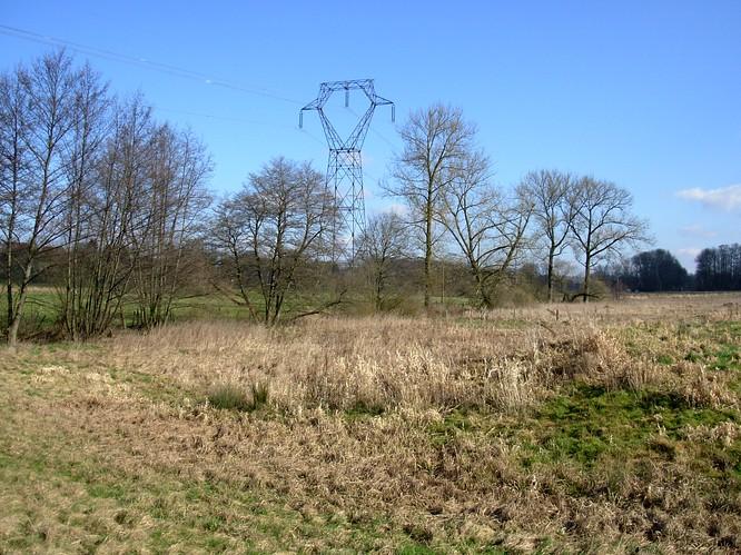 Stromleitung n�rdlich Faverois (F)