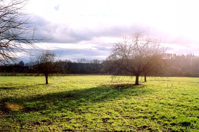 Winteranfang in Aarburg