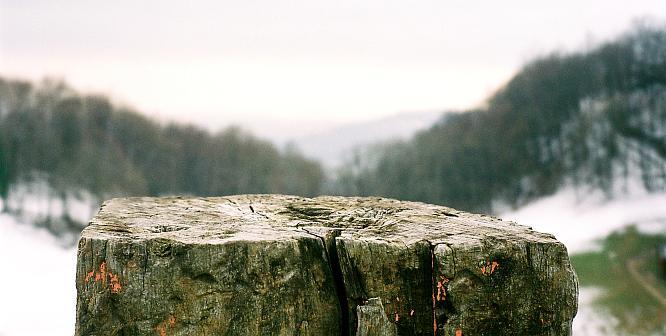Bei Burgruine Froburg um Olten, Blick gegen S�den