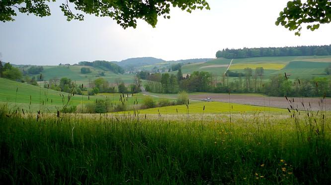 In Untersteckholz Sicht nach Melchnau
