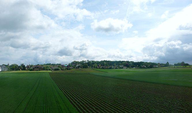 Im Land N�he Schaffhausen