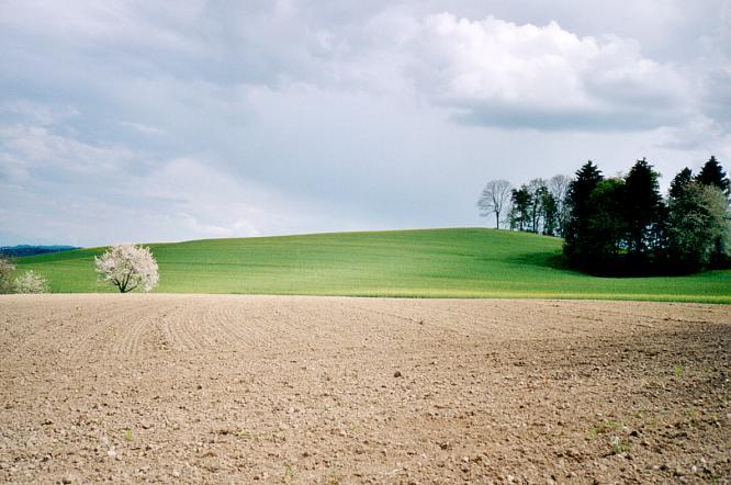 Gebiet um Pfafnau