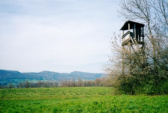 Hochsitz auf Engelberg in Dulliken