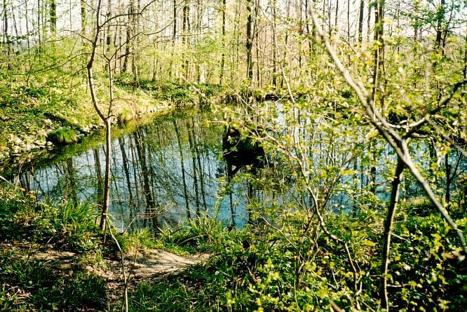Biotop in Aarburg