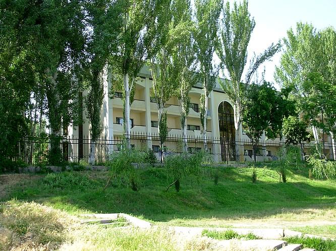 Trees in Tashkent