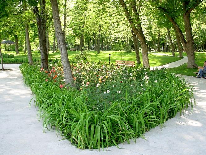 Japonaise Garden