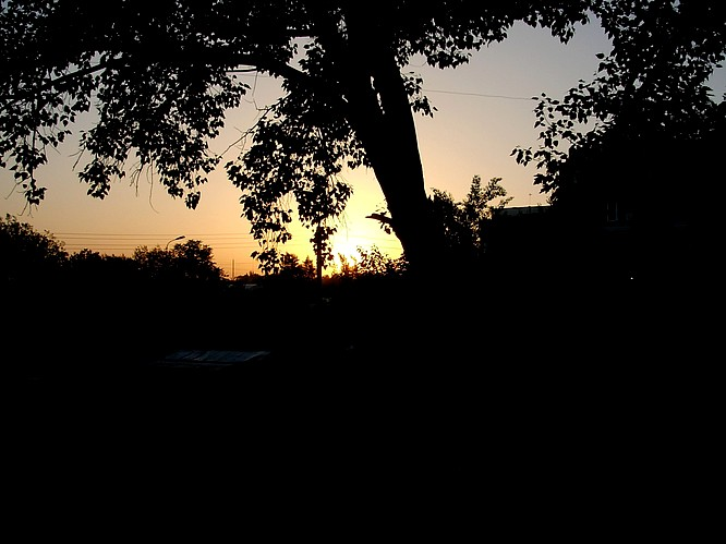 Evening Sun in Tashkent